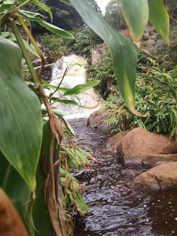 kauia-waterfall
