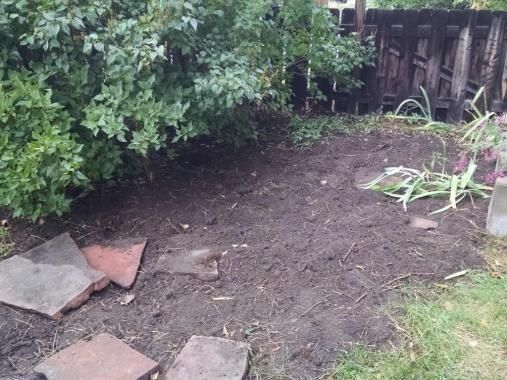 clean back garden