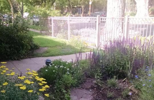 good fence 1